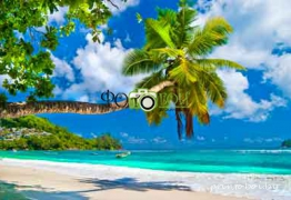Картинки Море и пляж для фотообоев